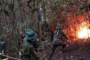 Hơn 10 giờ vật lộn với 'bà hỏa' để cứu rừng thông ở Huế của 200 cán bộ, chiến sỹ