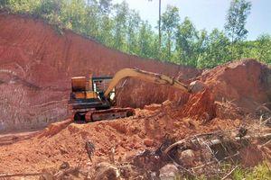 Hoài Ân (Bình Định): Chính quyền bất lực nhìn đồi núi bị 'khai tử' để lấy đất