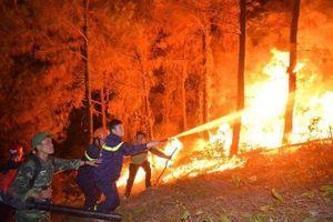 Vụ cháy rừng trên núi Hồng Lĩnh: Đã không chế được ngọn lửa
