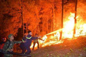 Các lực lượng 'trực chiến' thâu đêm đề phòng cháy rừng tái bùng phát