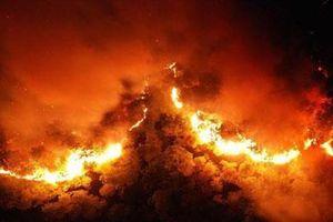 H'Hen Niê, Đỗ Mỹ Linh cùng sao Việt hướng về vụ cháy rừng ở miền Trung