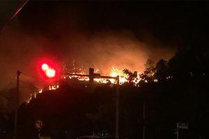 Cháy rừng khắp nơi, Thủ tướng ra công điện khẩn