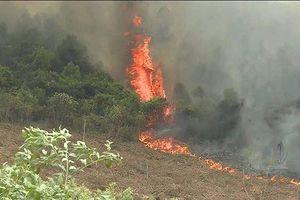 Hơn 500 người căng mình giữa biển lửa cứu rừng thông ở Quảng Bình