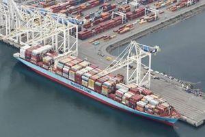 Container rác thải Canada đã về nước