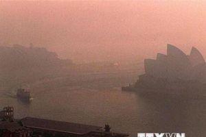 Liên hợp quốc kêu gọi hành động khẩn cấp trong vấn đề biến đổi khí hậu