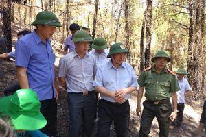 Hiện trường sau vụ cháy rừng lớn nhất ở Hà Tĩnh: Tan hoang dãy Hồng Lĩnh