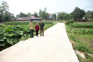 Vĩnh Phúc: Tam Đảo nâng cao chất lượng các tiêu chí xã, huyện Nông thôn mới