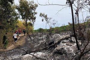 Quảng Ngãi: Xuyên đêm chữa cháy rừng ở Đức Phổ