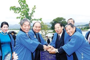 Thúc đẩy hoạt động ngoại giao nhân dân Việt Nam - Nhật Bản