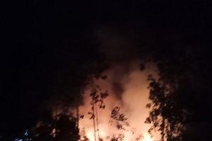 Trắng đêm khống chế vụ cháy rừng ở Đức Phổ, Quảng Ngãi