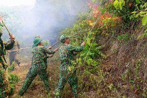 BĐBP các tỉnh miền Trung tích cực tham gia chữa cháy rừng