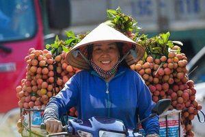 Vải thiều Bắc Giang lập kỷ lục doanh thu hơn 6.000 tỷ, 60 năm mới có 1 lần