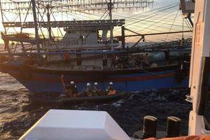 Vụ chìm tàu trên biển Hải Phòng: Huy động tàu giã cào tìm kiếm ngư dân