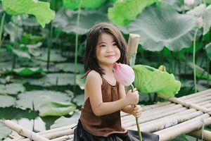 Bé gái xinh như thiên thần bên hoa sen đốn tim cộng đồng mạng