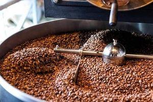 Giá cà phê hôm nay 1/7: Dao động quanh mức 34.000/kg