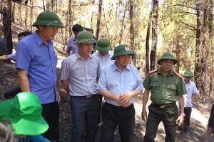 Lãnh đạo Hà Tĩnh chỉ đạo quyết liệt chữa cháy rừng và khắc phục hậu quả