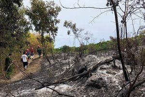 Rừng ở Quảng Ngãi cháy liên tục suốt 24 tiếng đồng hồ