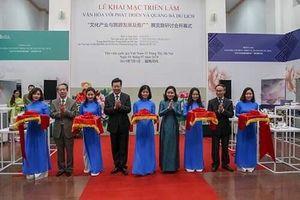 Khai mạc triển lãm 'Văn hóa với phát triển và quảng bá du lịch'