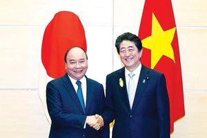 Khẳng định những bước phát triển thực chất của quan hệ hai nước