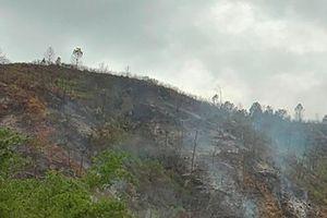 Cháy rừng: Xót xa sau biển lửa
