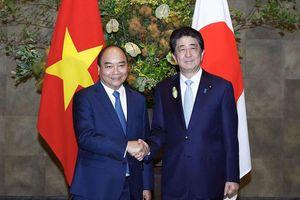 Thủ tướng mời doanh nghiệp Nhật Bản 'mở hàng' EVFTA