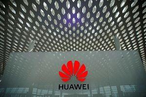 Huawei chờ 'cái gật đầu' từ Mỹ để tiếp tục sử dụng Android