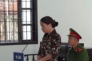 Cuỗm hơn 650 triệu đồng tiền đăng kiểm xe, nữ thủ quỹ lĩnh 7 năm tù
