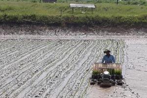 Huy động sức dân để phát triển nông nghiệp, xây dựng Nông thôn mới
