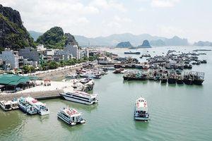 Bão số 2: Quảng Ninh cấm biển từ 11 giờ sáng nay