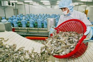 Doanh nghiệp Việt cần làm gì để tận hưởng lợi thế từ Hiệp định CPTPP?