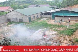 Cả thôn khốn khổ vì trại lợn ô nhiễm