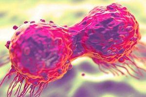 Phát hiện 'gót chân Achilles' của loại gene gây nên ung thư
