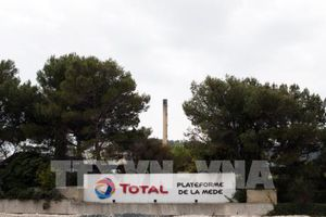 Dự án sản xuất nhiên liệu sinh học của Total bị phản đối mạnh
