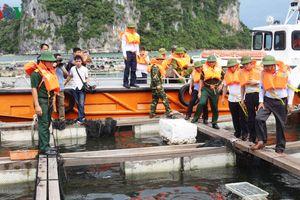 Bão số 2 đã ảnh hưởng đến vùng biển gần đảo Bạch Long Vỹ