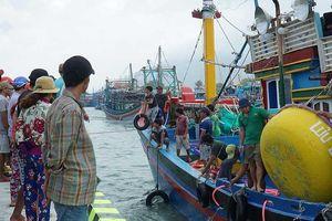 Ninh Thuận: Tang thương xóm chài Lạc Tân