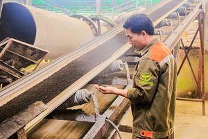 'Chìa khóa' cho nền nông nghiệp bền vững