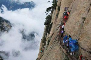 Trải nghiệm thưởng trà trên đỉnh Hoa Sơn