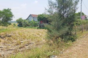 Đất đã cấp 14 năm, bỗng dưng thu hồi: UBND huyện thua kiện!
