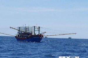 Chủ động thực hiện biện pháp bảo hộ 21 ngư dân bị Malaysia bắt giữ