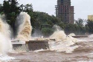 Bão số 2 gây sóng to gió lớn ở huyện đảo Cát Hải và Đồ Sơn