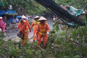 Bão số 2 đổ bộ vào Đồ Sơn, nhiều cây bật gốc, mất điện cục bộ