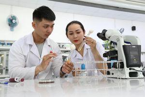 Thí sinh trúng tuyển phương thức SAT của ĐH Quốc tế Hồng Bàng có điểm cao
