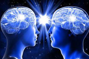 Chấn động sức mạnh thần kỳ của 'giác quan thứ 6'