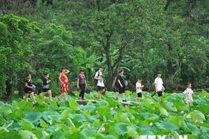 Việt Nam nằm trong top 5 địa điểm du lịch yêu thích của người Nhật Bản