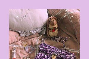 Soái ca thức đêm đan túi tặng bạn gái