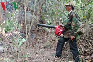 Quảng Ngãi xảy ra 27 vụ cháy, thiêu rụi 87 ha rừng