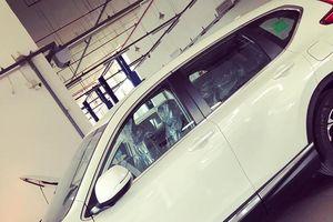 Mới đi 10.000km, chiếc Honda CR-V đã 'nát bét' do chuột