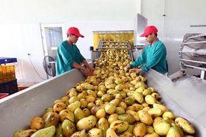 FTA thế hệ mới: Cơ hội chuyển mình của nông sản Việt