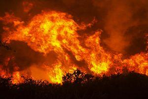 Miền Trung truy tìm thủ phạm gây cháy rừng