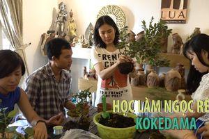 Làm ngọc rêu Kokedama Nhật Bản là làm gì mà nhiều người thích vậy?